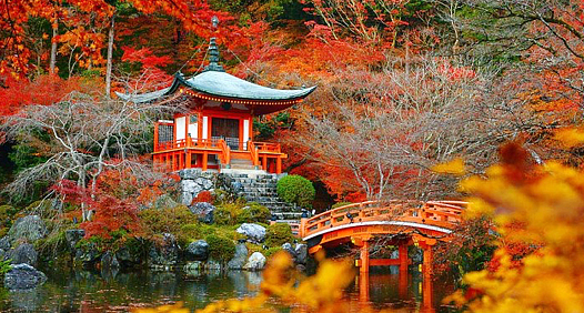 Hẹn hò mùa thu lá đỏ Nhật Bản cùng du thuyền 5 sao Quantum of the seas