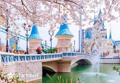 Chiêm ngưỡng mùa hoa anh đào Hàn Quốc