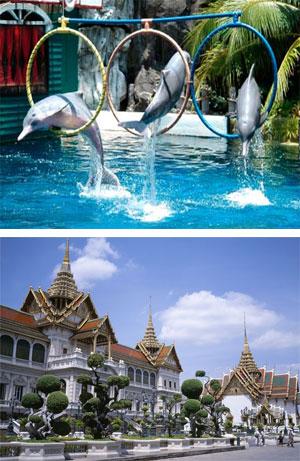 Ngày 05: Pattaya - Bangkok - Safari World - Trại Rắn - Cung Điện Hoàng Gia