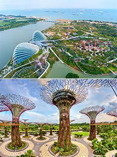 Ngày 01: TP.HCM - SINGAPORE
