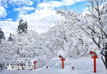 Nhật Bản - Mùa hoa tuyết