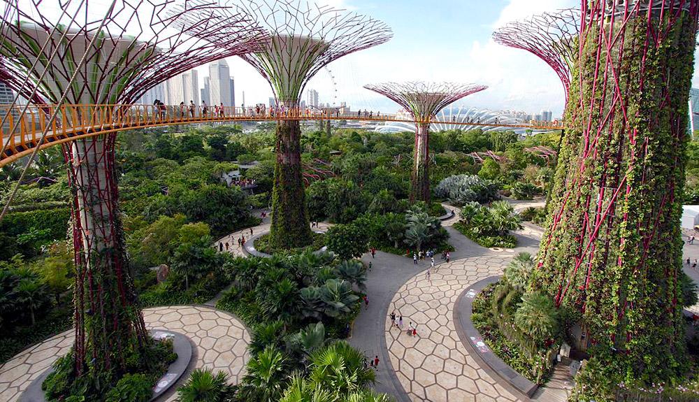 NGÀY 2: SINGAPORE - INDONESIA
