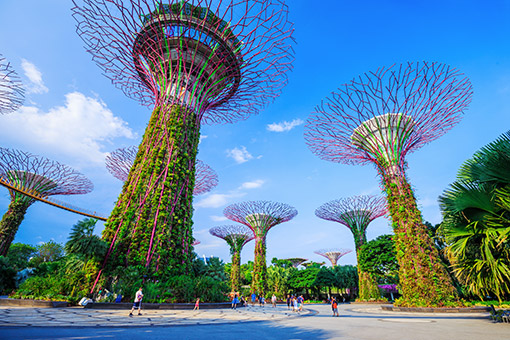 Tp. Hồ Chí Minh - Singapore - Du Thuyền (Ăn trưa, tối)