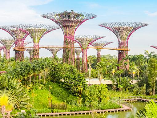 Singapore - Hồ Chí Minh