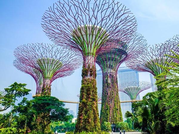 10-dieu-mien-phi-o-singapore-06.jpg