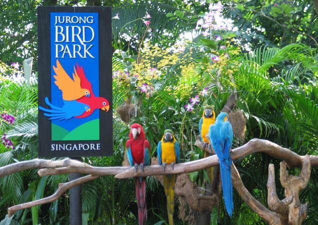 Jurong-Bird-Park.jpg