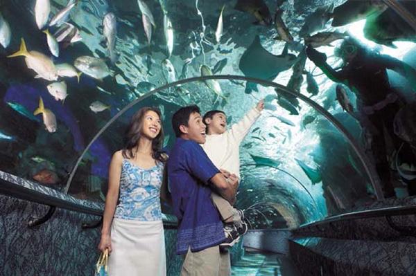 lan-dau-den-singapore-06.jpg