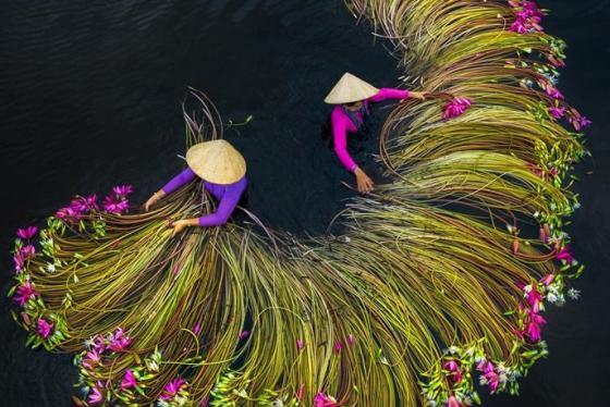 Tác phẩm của Việt Nam lọt vào top ảnh du lịch đẹp nhất thế giới