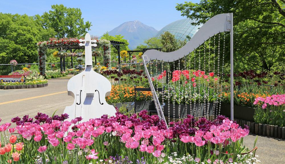 du thuyền 5 sao vườn hoa tottori hanakairo