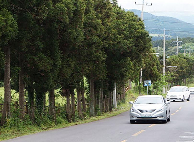 Điều kỳ lạ trên con đường ma quái ở đảo Jeju Hàn Quốc