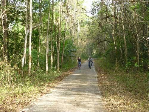 Trải nghiệm xuyên rừng ở Nam Cát Tiên