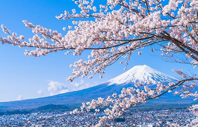 Xu hướng dịch chuyển mới: khám phá văn hoá Nhật Bản cùng du thuyền 5 sao